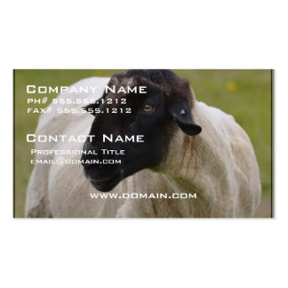 Black Faced Sheep Double-Sided Standard Business Cards (Pack Of 100)