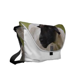 Black Faced Sheep Messenger Bag