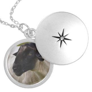 Black Faced Sheep Round Locket Necklace