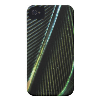 Black Feather iPhone 4 Case