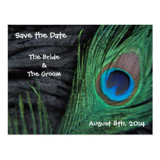 Black Feathers Save the Date Postcard