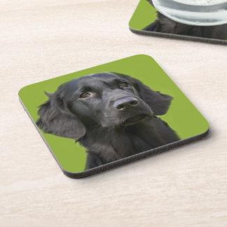 Black Flat Coated Retriever dog coasters