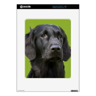 Black Flat Coated Retriever dog ipad decal, skin iPad Skin