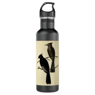 Black Flycatcher 24oz Water Bottle