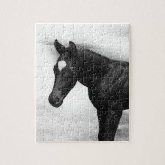 Black Foal Puzzle