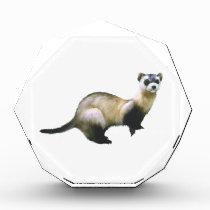 Black-Footed Ferret Award