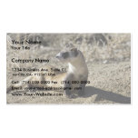 Black-Footed Ferret (captive) Double-Sided Standard Business Cards (Pack Of 100)