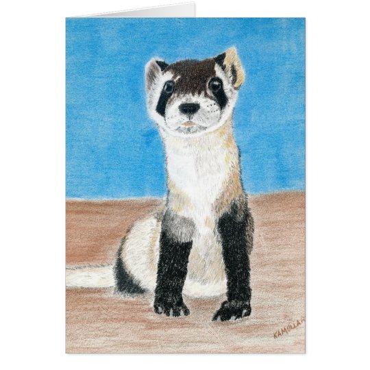black footed ferret card