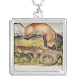 Black-footed Ferret Silver Plated Necklace