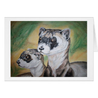 Black Footed Ferrets Wildlife Art Card