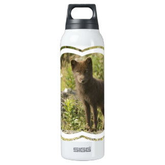 Black Fox SIGG Thermo 0.5L Insulated Bottle