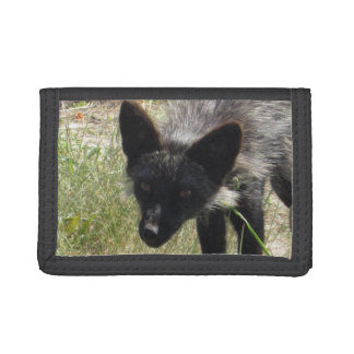 Black Fox Tri-fold Wallet