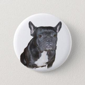 Black French Bulldog button