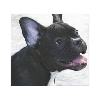 Black French Bulldog canvas art print