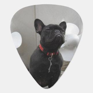 Black French Bulldog Pick
