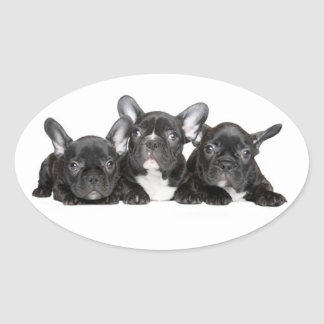 Black French Bulldog Puppy Dog Sticker / Seal