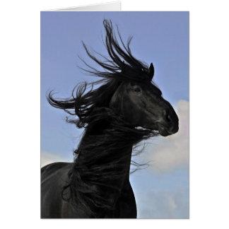 Black Friesian Horse Portrait Card