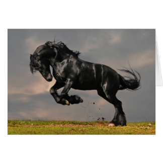 Black Friesian Horse Running Free Card