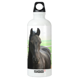 Black Friesian Horse SIGG Traveler 0.6L Water Bottle