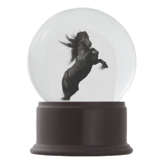Black Friesian Horse Snow Globe