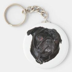 Black Funny Pug Keychain at Zazzle