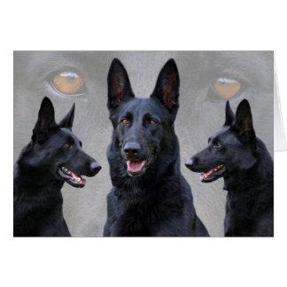 Black German Shepherd Collage Card