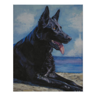 black german shepherd fine art print