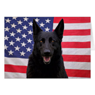 Black German Shepherd - USA Greeting Card