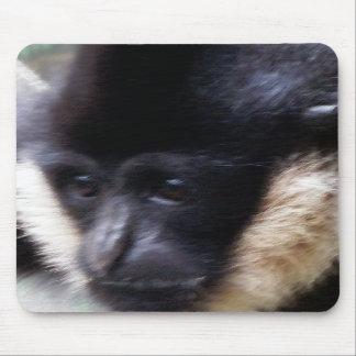 Black Gibbon Ape Face Closeup Pastel Mouse Pads