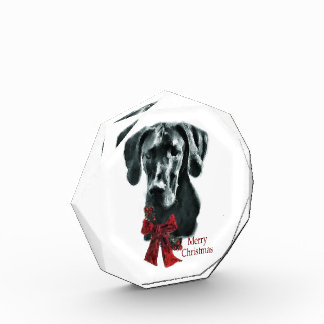 Black Great Dane Christmas Award