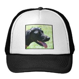 Black Great Dane Trucker Hat