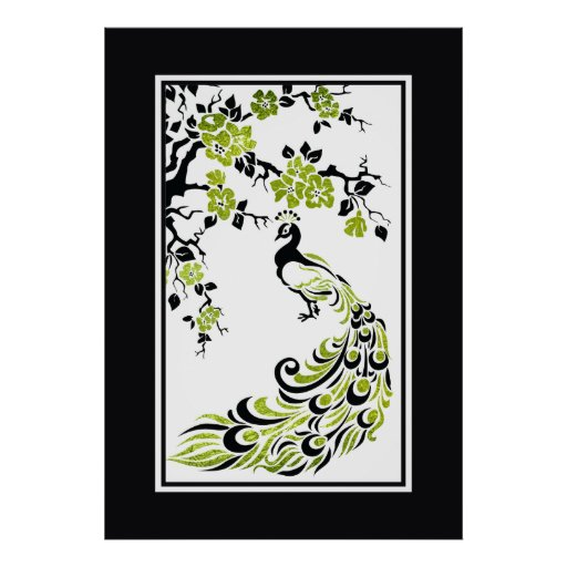 Black, green peacock and cherry blossoms posters