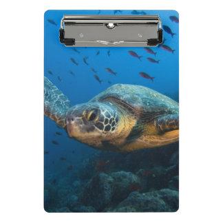 Black (Green) Turtle (Chelonia agassizi) Mini Clipboard