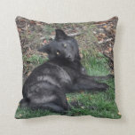 Black Grey Wolf Pup Wildlife Throw Pillow