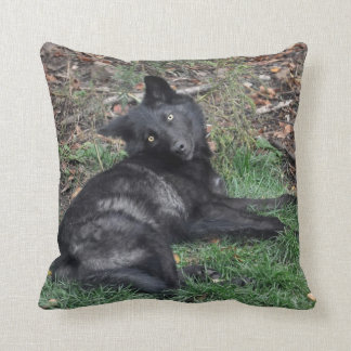 Black Grey Wolf Pup Wildlife Throw Pillow