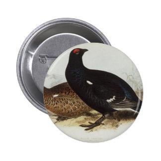 Black Grouse Pins