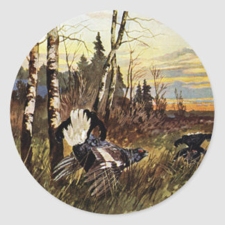 Black Grouse Mating Display Classic Round Sticker