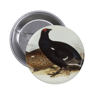Black Grouse Pinback Button