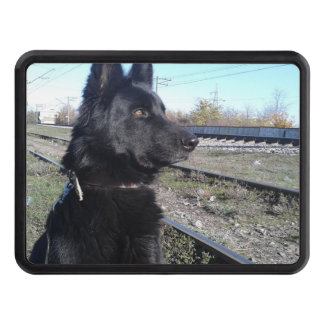 Black GSD with Train Tracks Hitch Cover
