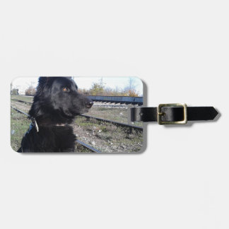 Black GSD with Train Tracks Luggage Tags