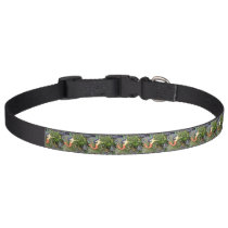 black-haired sirena mermaids pet collar