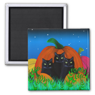 Black Halloween Cats with Pumpkins Magnet