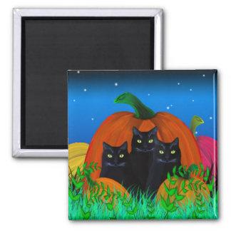 Black Halloween Cats with Pumpkins Magnet