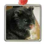 Black Hamster Photo Metal Ornament