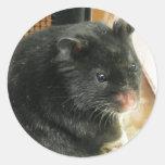 Black Hamster Round Sticker