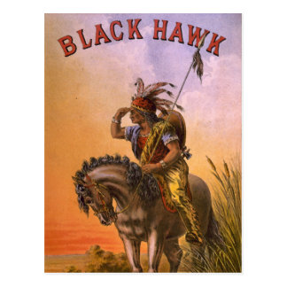 Black Hawk Native American Indian Postcard