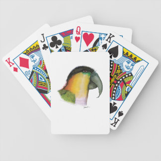 black headed caique, tony fernandes bicycle playing cards