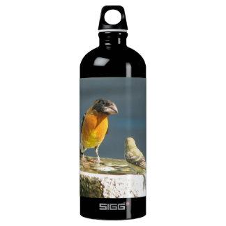 Black Headed Grosbeak Bird SIGG Traveler 1.0L Water Bottle