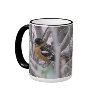 Black-headed Grosbeak Ringer Mug