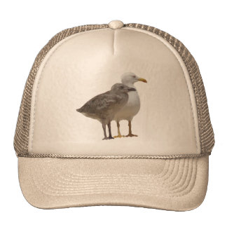 black headed gull digital drawing trucker hat